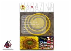 ARTOTEC Magazine nr 1 Lekskulpturer och Urbana Möbler med [Konst & Teknik]